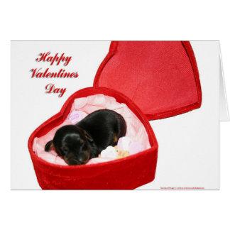 Cartes Jour de Valentines Doxie