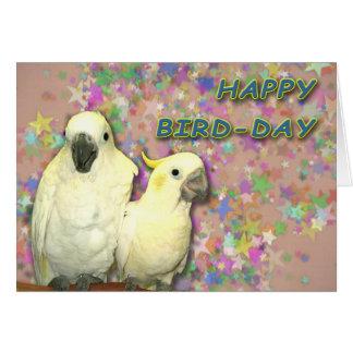 Cartes Jour d'oiseau