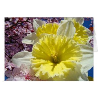 Cartes Journées de printemps gaies joyeuses heureuses !