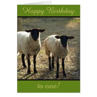 Cartes Joyeux anniversaire à la brebis du troupeau !