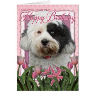 Cartes Joyeux anniversaire - Terrier tibétain