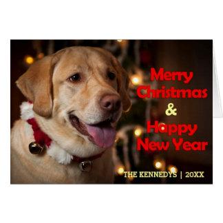 Cartes Joyeux Noël - collier de labrador retriever Bell