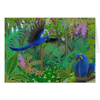 Cartes Jungle d'ara de jacinthe