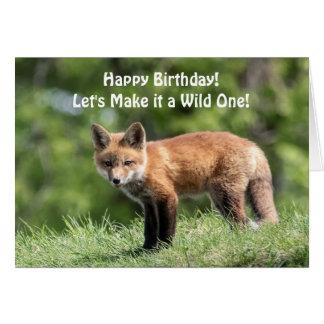 Cartes Kit de Fox rouge