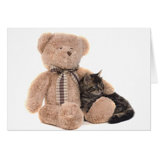 Cartes kitten in the arms of a teddy bear