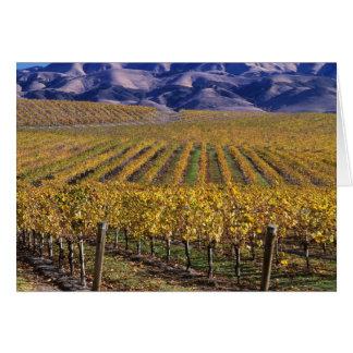 Cartes La Californie, le comté de San Luis_obispo, vallée
