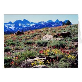 Cartes La Californie, sierra montagnes de Nevada 1