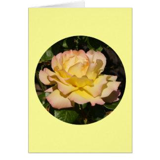 """Cartes La carte, rose de jaune rougissent"""" P-1 rose"""