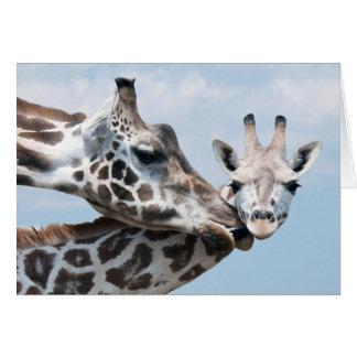 Cartes La girafe embrasse son veau