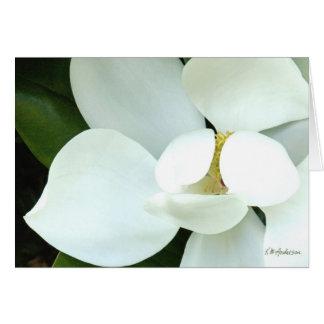Cartes La magnolia de Bobby II