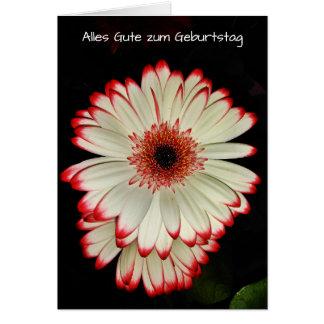 Cartes La marguerite blanche du Gerbera deux fleurit