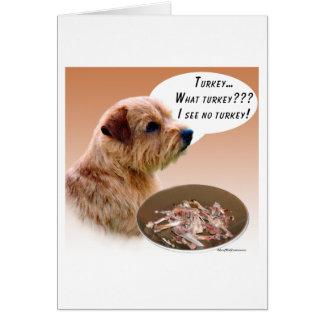 Cartes La Norfolk Terrier Turquie