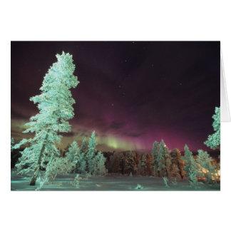 Cartes La Scandinavie, Finlande, Laponie, Kakslauttanen,