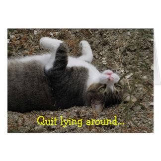 Cartes La sensation à l'envers de Kitty améliorent la
