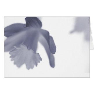 Cartes La sérénité de la fleur