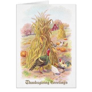 Cartes La Turquie et le troupeau du thanksgiving de cru