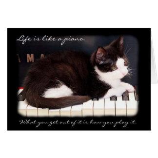 Cartes La vie de délivrance de chat de Greyfoot est une