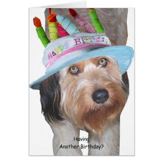Cartes Labradoodle dans le casquette d'anniversaire