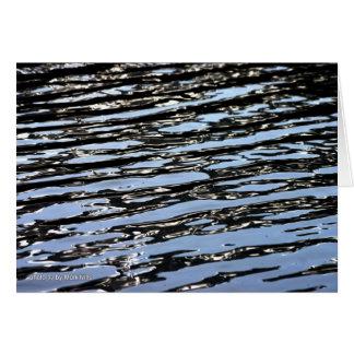 Cartes Lac Brainard