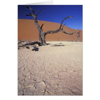 Cartes L'Afrique, Namibie, région de Sossusvlei. Dunes de