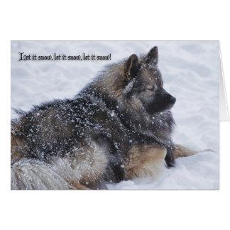 Cartes Laissez lui neiger, laissez-le neiger, laissez-le