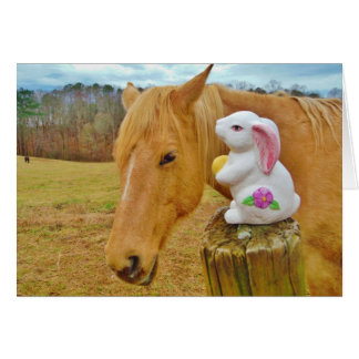 Cartes Lapin blanc et cheval jaune blond
