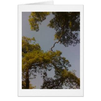 Cartes L'arbre de la vie vit longtemps et prospère