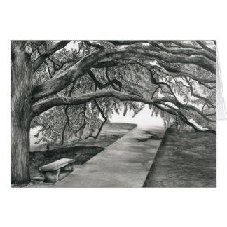 Cartes L'arbre de siècle