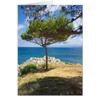 Cartes L'arbre sicilien