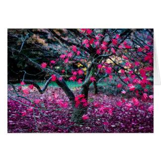 Cartes L'automne colore la collection