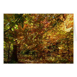 Cartes L'auvent de l'automne laisse à II la photographie