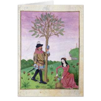 Cartes Lavande, Hellebore, et parent de concombre