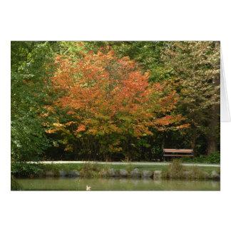 Cartes Le Central Park de Burnaby - couleurs d'automne
