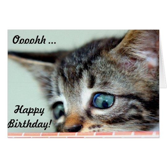 cartes le chaton mignon indique le joyeux anniversaire. Black Bedroom Furniture Sets. Home Design Ideas