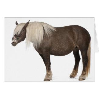 Cartes Le cheval de Comtois est un cheval de trait -