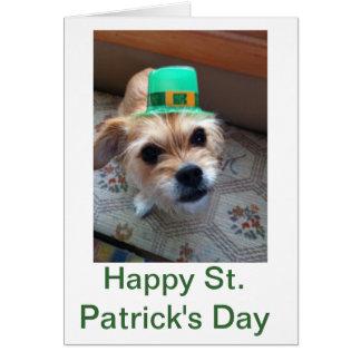 Cartes Le chiot de St Patrick