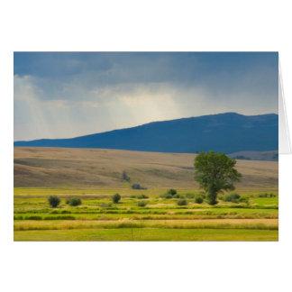 Cartes Le comté de Granite Montana