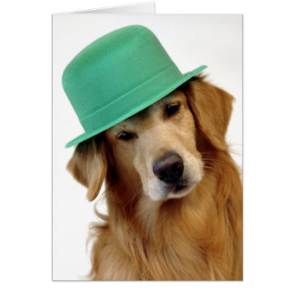 Cartes Le jour de St Patrick de golden retriever