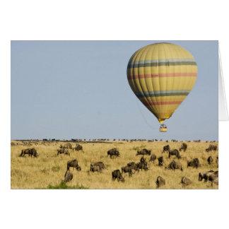 Cartes Le Kenya, masai Mara. Les touristes montent le