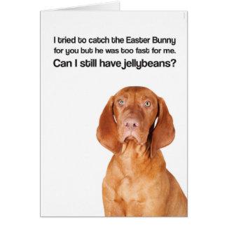 Cartes Le lapin de Pâques était trop rapide (Vizsla) -