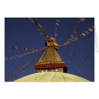 Cartes Le Népal, Katmandou. Sous des drapeaux de prière,
