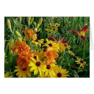 Cartes Le nouveau jour fait du jardinage Daylily 'Bronze