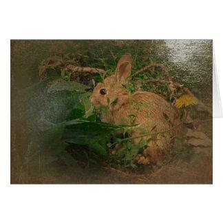 Cartes Le nouveau jour fait du jardinage le lapin A de