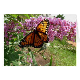 Cartes Le nouveau jour fait du jardinage papillon de