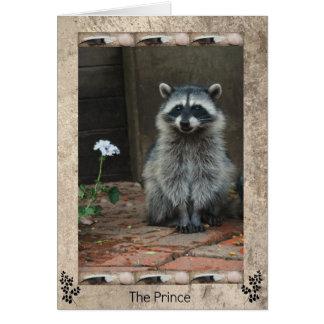 Cartes Le prince de raton laveur