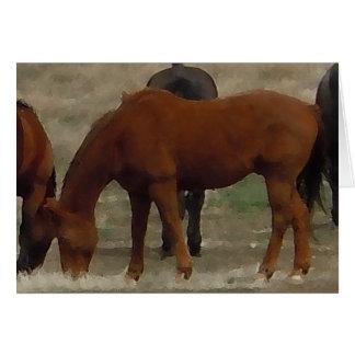 Cartes Le troupeau de Remuda frôle - des chevaux de vache