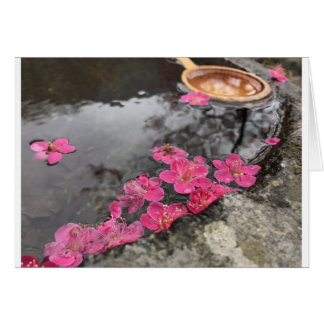 Cartes l'eau rose de fleurs de pétale