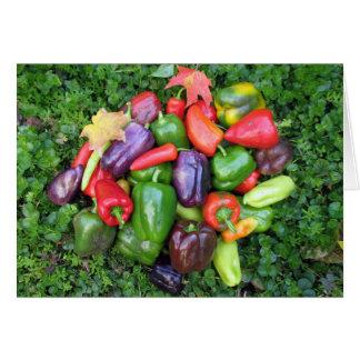 Cartes Légume et feuille colorés d'érable