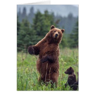 Cartes Les Etats-Unis, l'Alaska du sud-est, ours de Brown