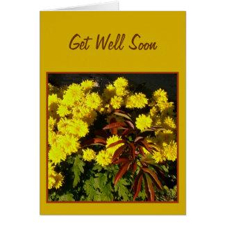 Cartes Les fleurs assez jaunes obtiennent bientôt la